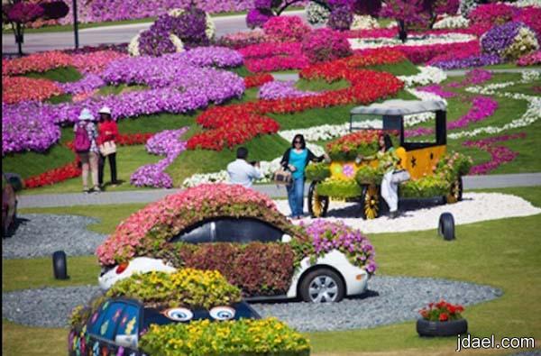صور حديقة ميراكل جاردن دبي واجمل رحله قصيره بين الورد