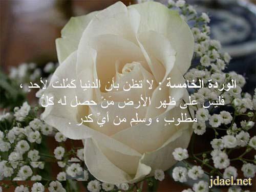 الورود العشرة للدكتور عائض القرني باقة الورد واجمل الكلام بالصور