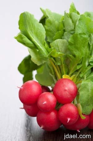 تناول الخضار يساعد ارتفاع نسبة الايض لانقاص الوزن بسرعه