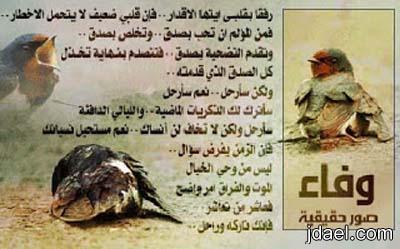 الوفاء وفاء بصور حقيقه تبكي الملايين