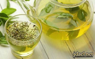 الشاي الاخضر بالطريقة الصحية لمحاربة الدهون والامراض الخطيرة