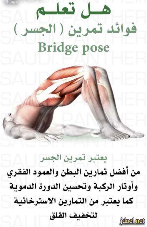 افضل تمرين لشد البطن وتحسين الدورة الدموية ويخلص من القلق