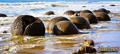 صور وعجائب على شاطئ بيض التنين في نيوزلندا