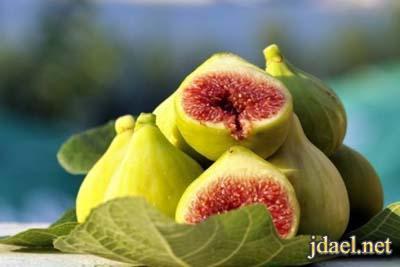 فوائد فاكهة التين لمرض السرطان وهو علاج فعال لامراض خطيره