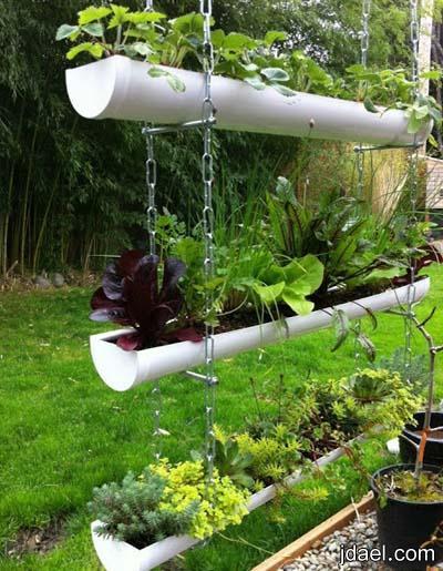 افكار روعه للنباتات الطبيعيه للحدائق الصغيرة المساحه بالصور