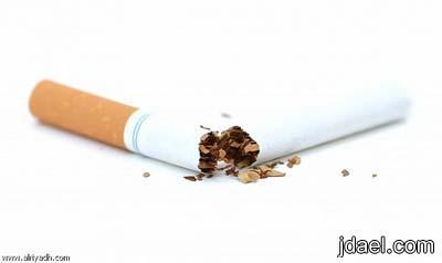 الشوفان والبابونج تحتوي على مركبات تساعد في وقف التدخين
