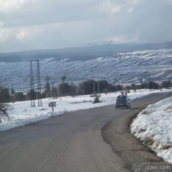 جوله سياحية مدينة افران المغربيه بين الثلج والطبيعة الخضراء
