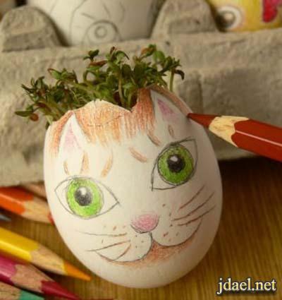 اعمال يدويه روعه قشر البيض وطريقة زراعة النبات