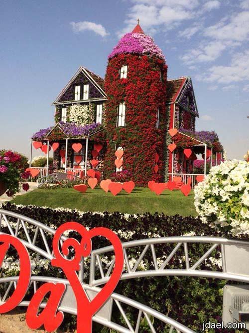 صور حديقة ميراكل جاردن في دبي واجمل رحله قصيره بين الورد والزهور