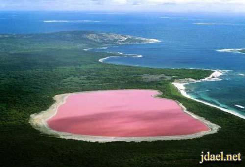 صور بحيرة هيلير الوردية استراليا الغربية