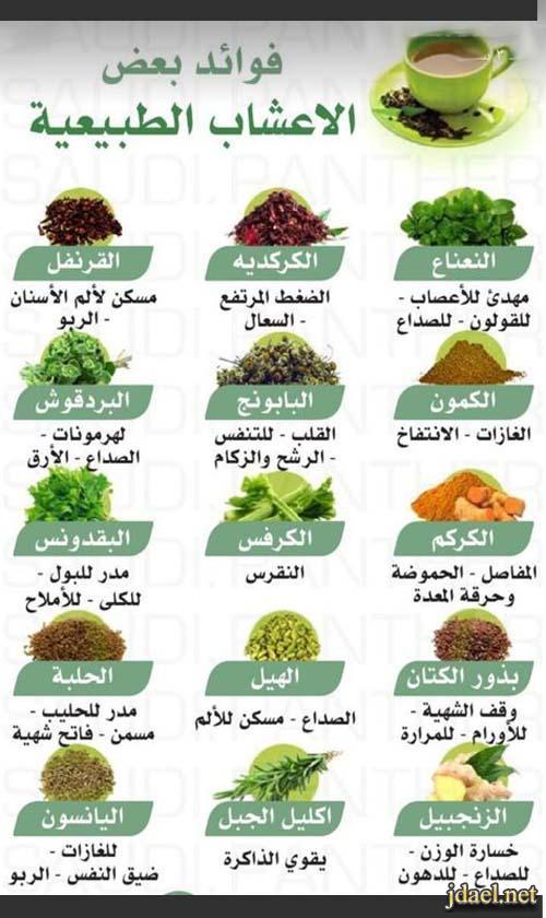 فوائد العلاج بالاعشاب الطبيعية للرشح والزكام وضيق التنفس وامراض اخرى