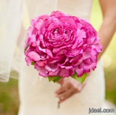 استبدال باقة العروسه بوردة واحده بالصور