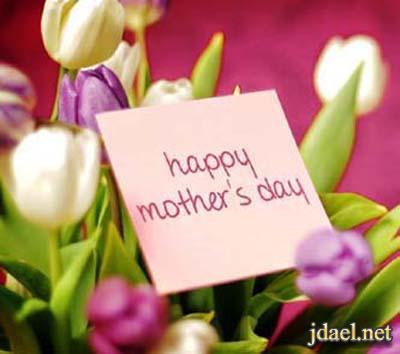 خلفيات وتساب ايفون بلاك بيري جالكسي وكل الورد لك امي