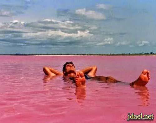 صور بحيرة هيلير الوردية في استراليا الغربية