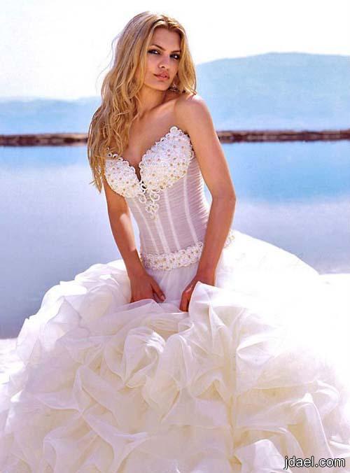 فساتين زفاف العروسه من قماش اورجانزا المشكوك باروع شك على صدرية الفستان