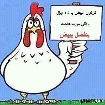 صور ساخره لمقاطعة الدجاج السعوديه ودول الخليج