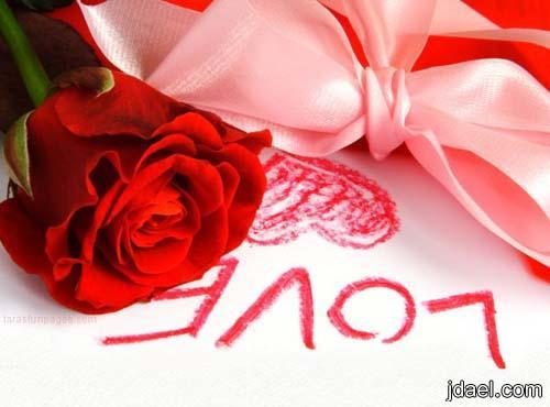 حنين الحب لك يامهجتي