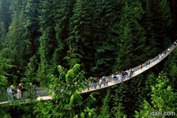 السياحة لطبيعة ساحرة في مدينة فانكوفر