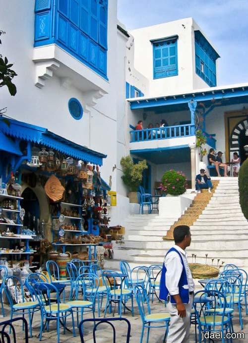 ضاحية سيدي بو سعيد في تونس وسياحه غير شكل بالصور