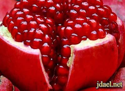 فوائد الرمان الصحية الرمان علاج طبيعي لالتهاب المفاصل وامراض القلب