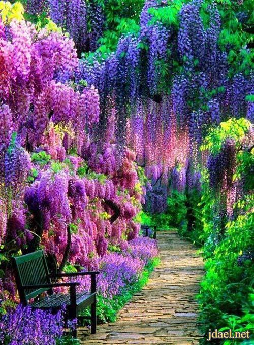 اروع مناظر طبيعية خلابة جمال الطبيعة وسحر والالوان