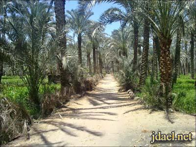 رحله سياحيه الريف المصري واهل مصر زمان بالصور