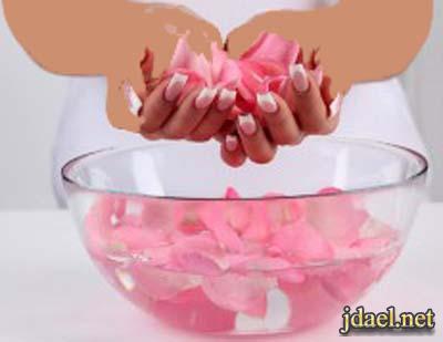 بتلات الورد وفوائد ماء وزيت الورد الحاله الصحيه والجمال