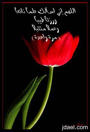 بدايه ونهاية يومك بذكر الله اذكار الصباح والمساء بالصور