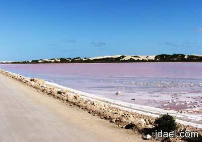 اغرب بحيره بمياه زهرية اللون استراليا غرائب الصور للطبيعه